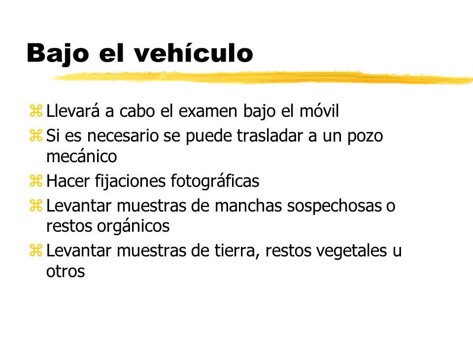 Bajo el vehículo zLlevará a cabo el examen bajo el móvil zSi es necesario se puede trasladar a un pozo mecánico zHacer fijaciones fotográficas zLevantar muestras de manchas sospechosas o restos orgánicos zLevantar muestras de tierra, restos vegetales u otros