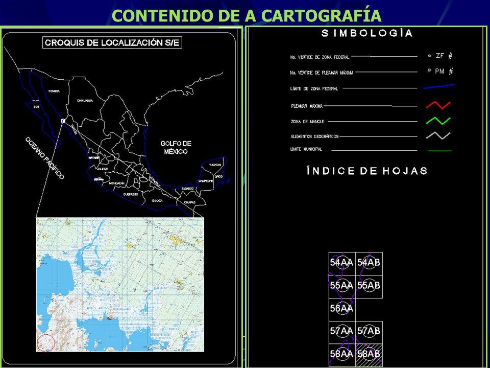 CONTENIDO DE A CARTOGRAFÍA