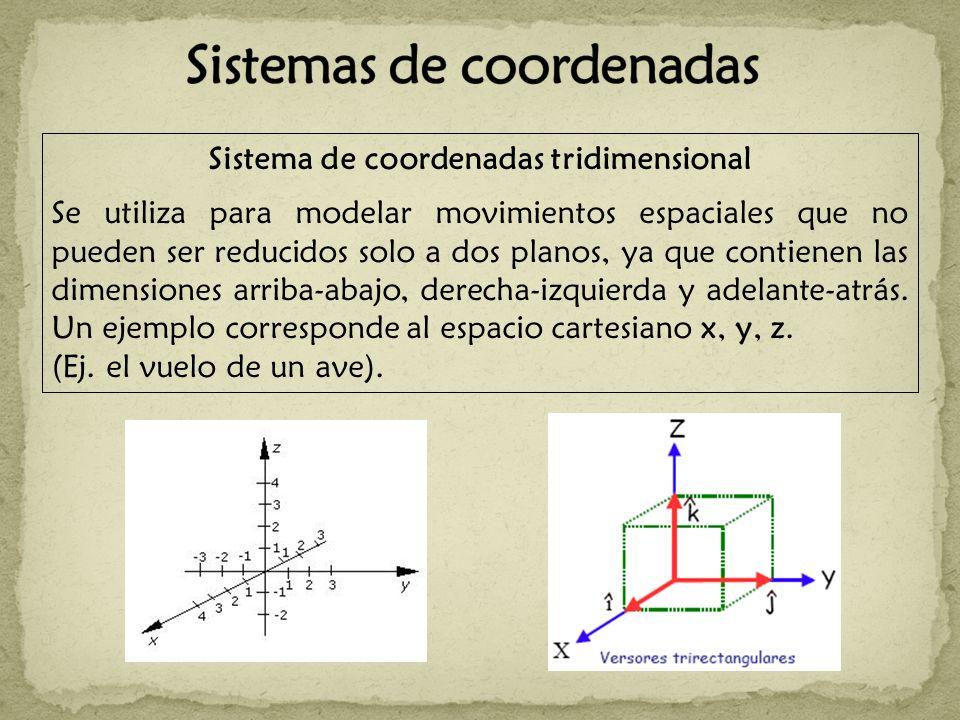 Sistema de coordenadas tridimensional Se utiliza para modelar movimientos espaciales que no pueden ser reducidos solo a dos planos, ya que contienen las dimensiones arriba-abajo, derecha-izquierda y adelante-atrás.