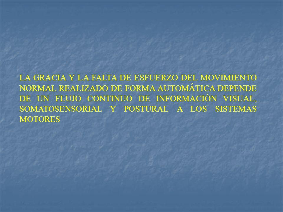 LA GRACIA Y LA FALTA DE ESFUERZO DEL MOVIMIENTO NORMAL REALIZADO DE FORMA AUTOMÁTICA DEPENDE DE UN FLUJO CONTINUO DE INFORMACIÓN VISUAL, SOMATOSENSORI