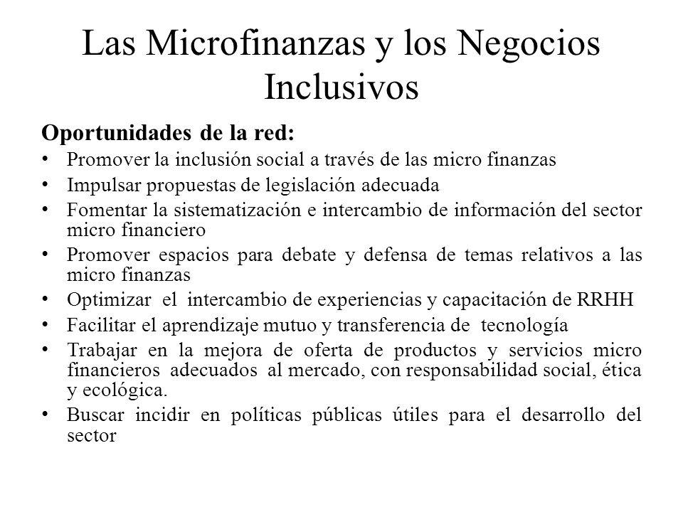 Las Microfinanzas y los Negocios Inclusivos Oportunidades de la red: Promover la inclusión social a través de las micro finanzas Impulsar propuestas d