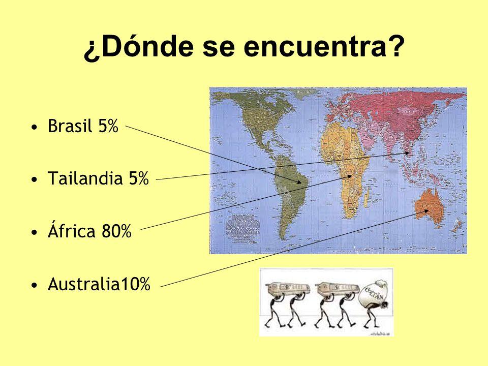 ¿Dónde se encuentra? Brasil 5% Tailandia 5% África 80% Australia10%