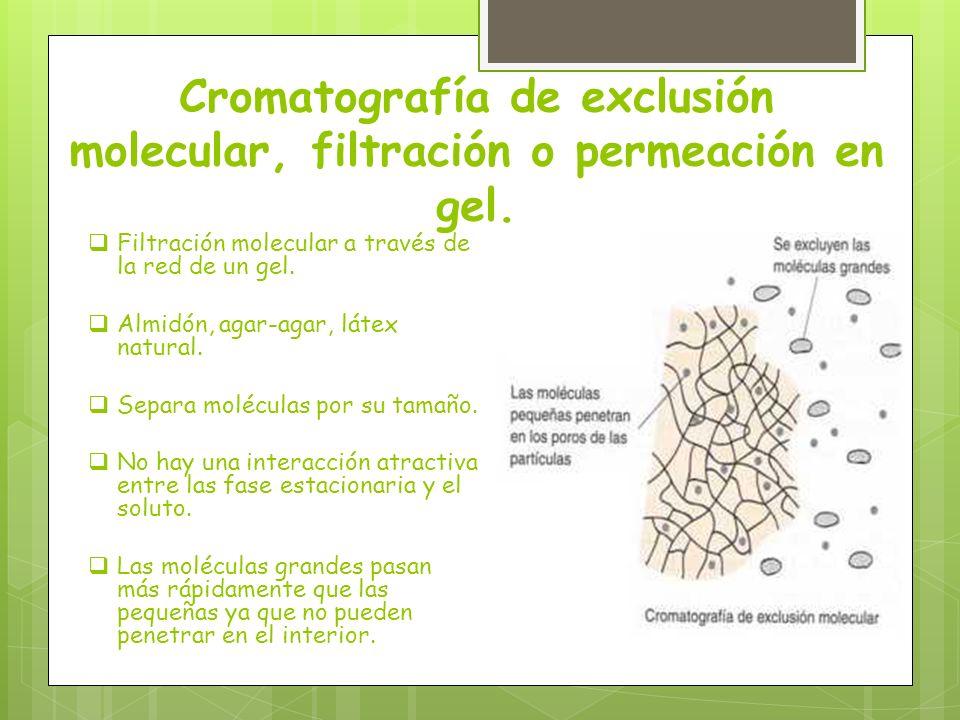 Cromatografía de exclusión molecular, filtración o permeación en gel. Filtración molecular a través de la red de un gel. Almidón, agar-agar, látex nat