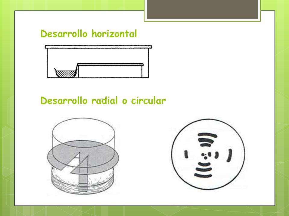 Desarrollo horizontal Desarrollo radial o circular
