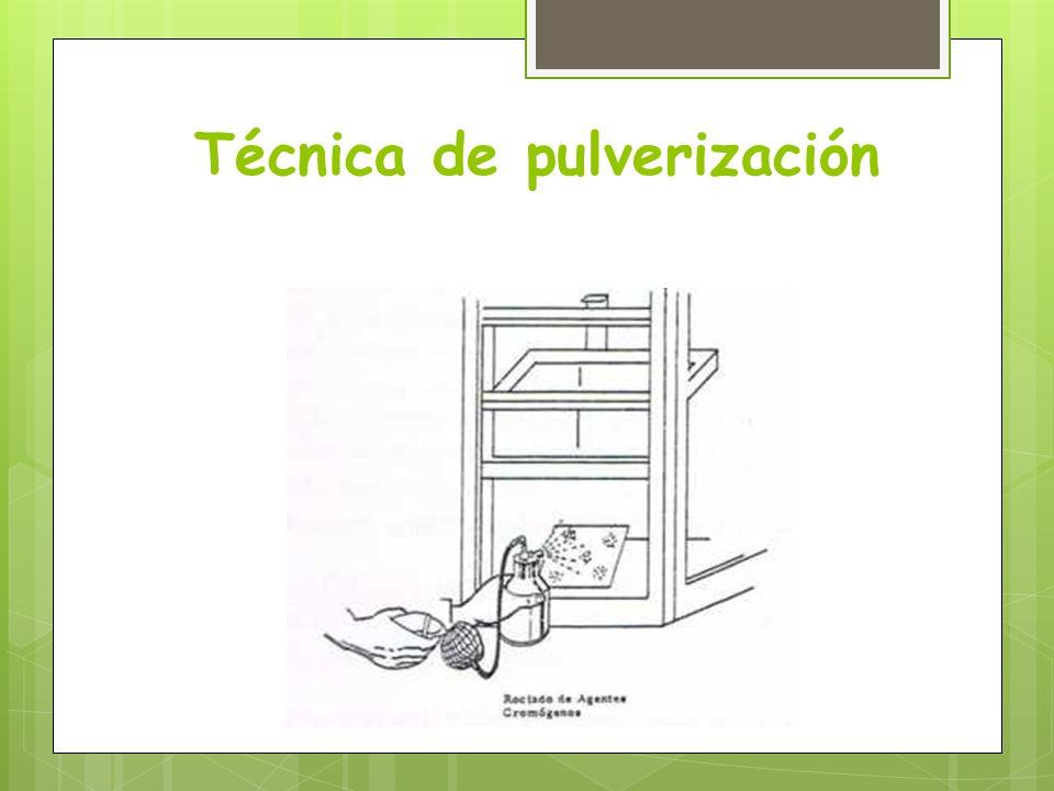 Técnica de pulverización