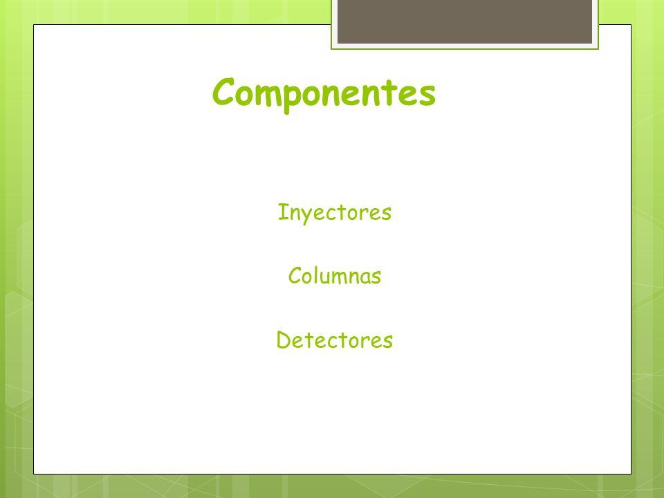 Componentes Inyectores Columnas Detectores