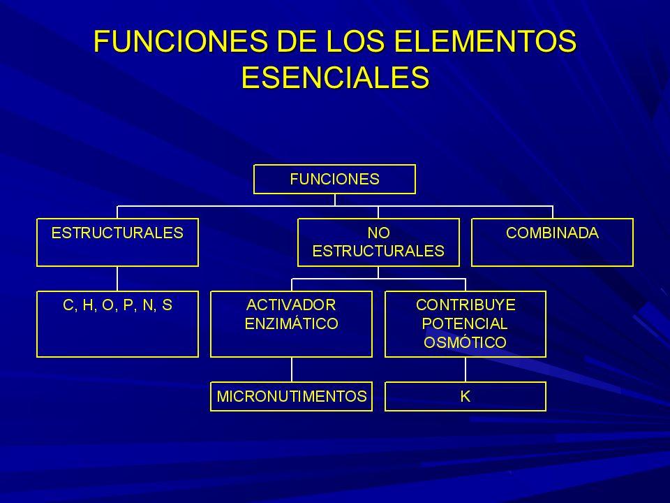 FUNCIONES DE LOS ELEMENTOS ESENCIALES