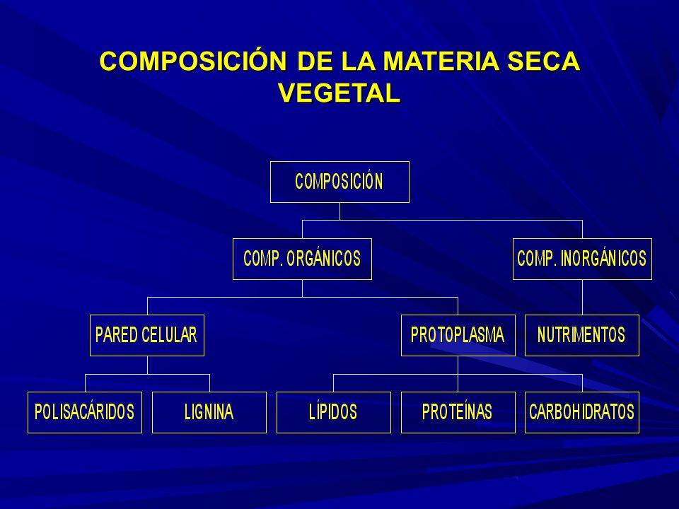 COMPOSICIÓN DE LA MATERIA SECA VEGETAL