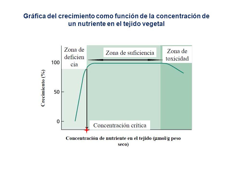 Gráfica del crecimiento como función de la concentración de un nutriente en el tejido vegetal