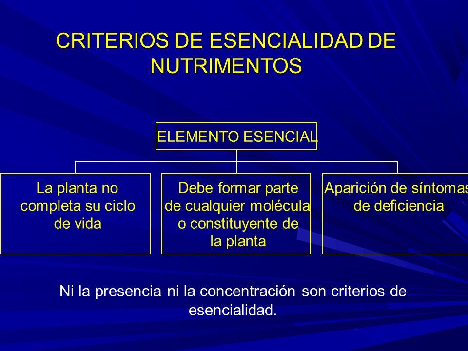 CRITERIOS DE ESENCIALIDAD DE NUTRIMENTOS La planta no completa su ciclo de vida Debe formar parte de cualquier molécula o constituyente de la planta Aparición de síntomas de deficiencia ELEMENTO ESENCIAL Ni la presencia ni la concentración son criterios de esencialidad.