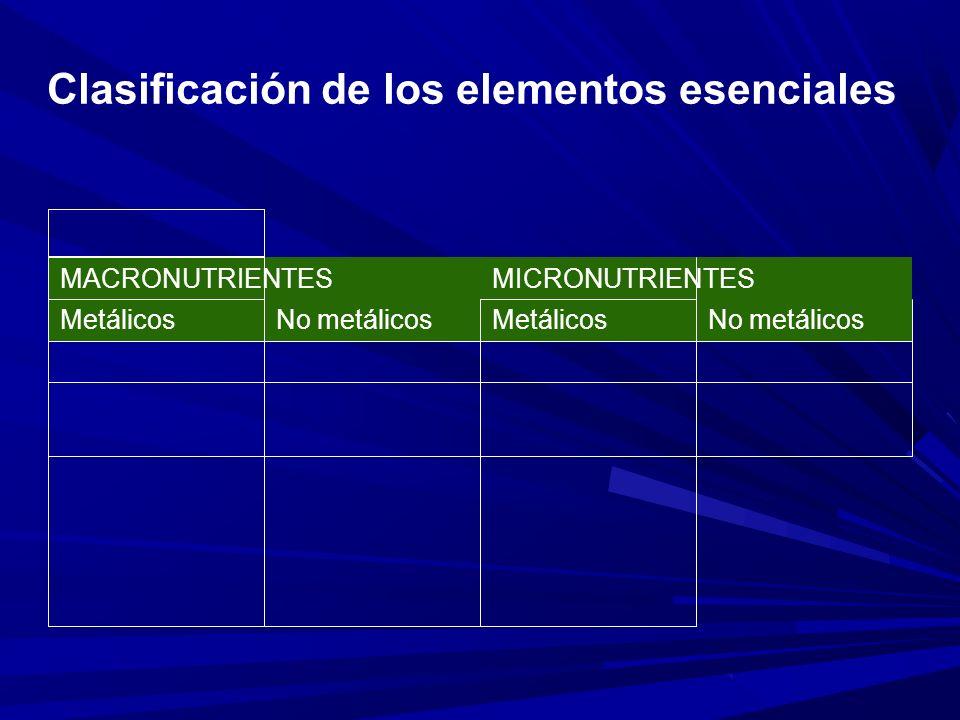 Clasificación de los elementos esenciales MACRONUTRIENTESMICRONUTRIENTES MetálicosNo metálicosMetálicosNo metálicos
