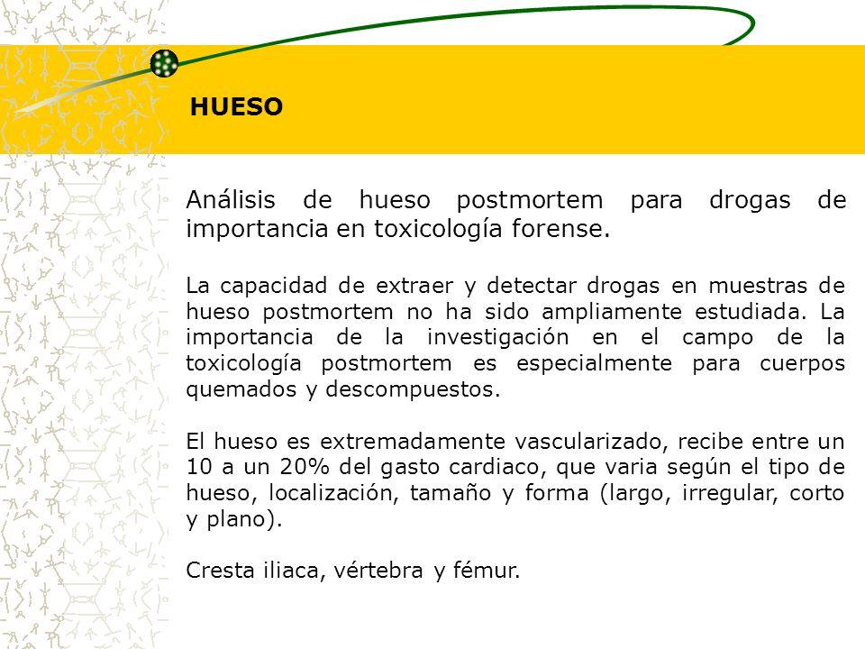 HUESO Análisis de hueso postmortem para drogas de importancia en toxicología forense. La capacidad de extraer y detectar drogas en muestras de hueso p