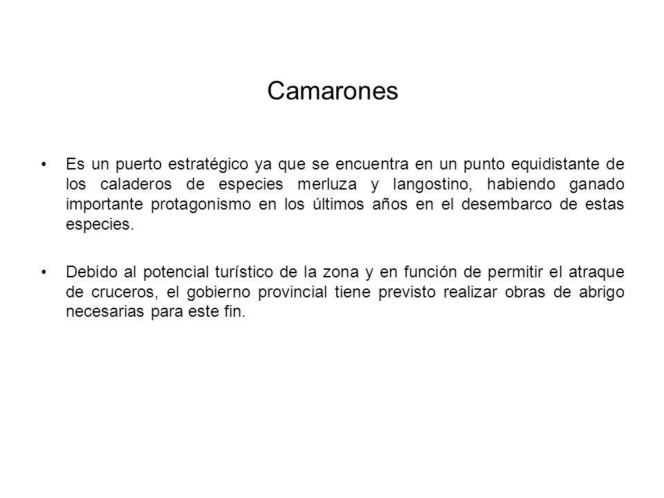 Camarones Es un puerto estratégico ya que se encuentra en un punto equidistante de los caladeros de especies merluza y langostino, habiendo ganado importante protagonismo en los últimos años en el desembarco de estas especies.