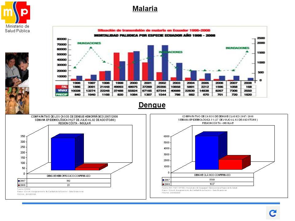 Ministerio de Salud Pública Malaria Dengue