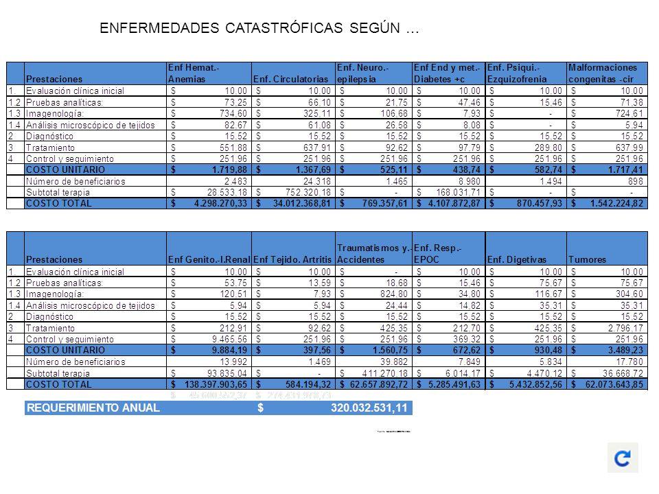 ENFERMEDADES CATASTRÓFICAS SEGÚN … Fuente: Consultoría MODERSA 2005