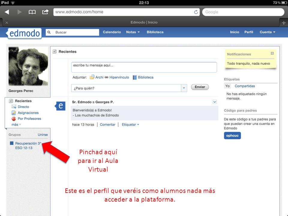 Esta plataforma funciona de una forma parecida a Facebook y, como veis, tiene un diseño parecido.