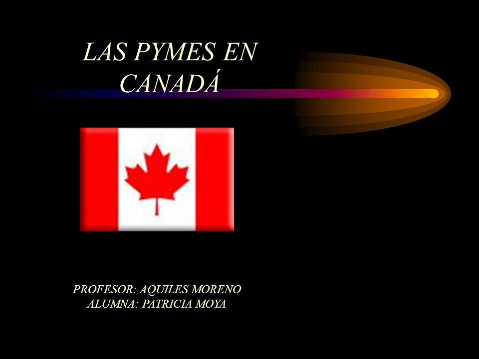 LAS PYMES EN CANADÁ PROFESOR: AQUILES MORENO ALUMNA: PATRICIA MOYA