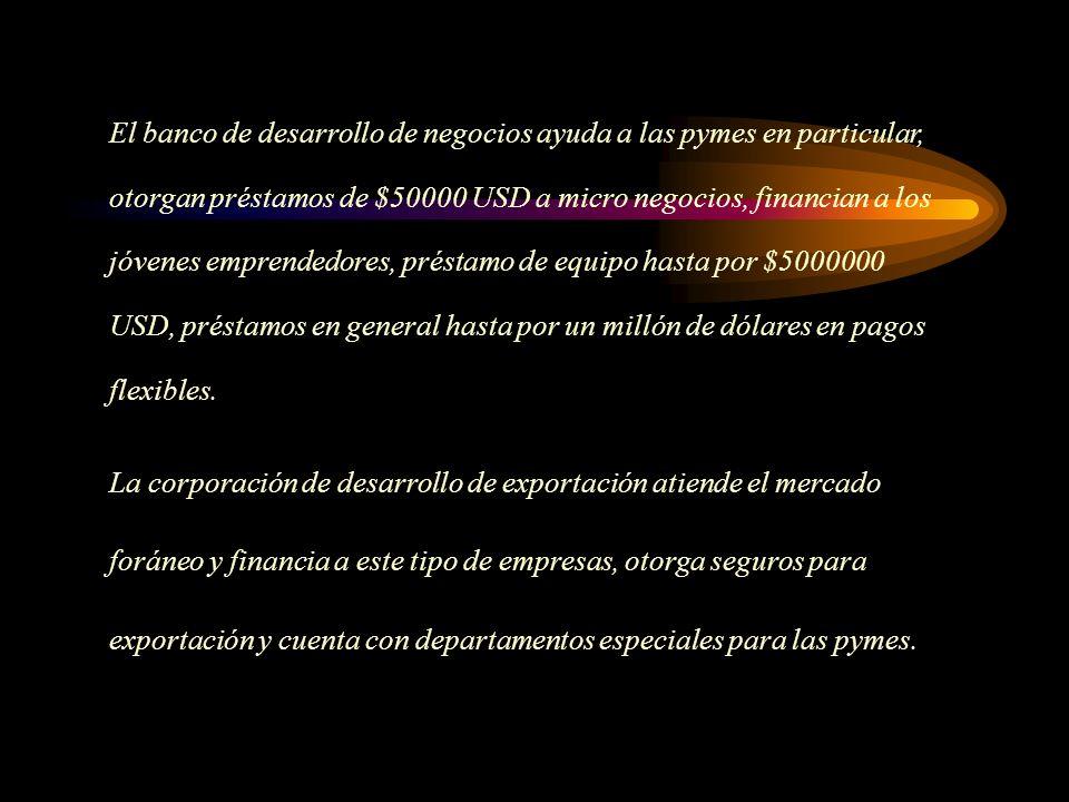 El banco de desarrollo de negocios ayuda a las pymes en particular, otorgan préstamos de $50000 USD a micro negocios, financian a los jóvenes emprendedores, préstamo de equipo hasta por $5000000 USD, préstamos en general hasta por un millón de dólares en pagos flexibles.