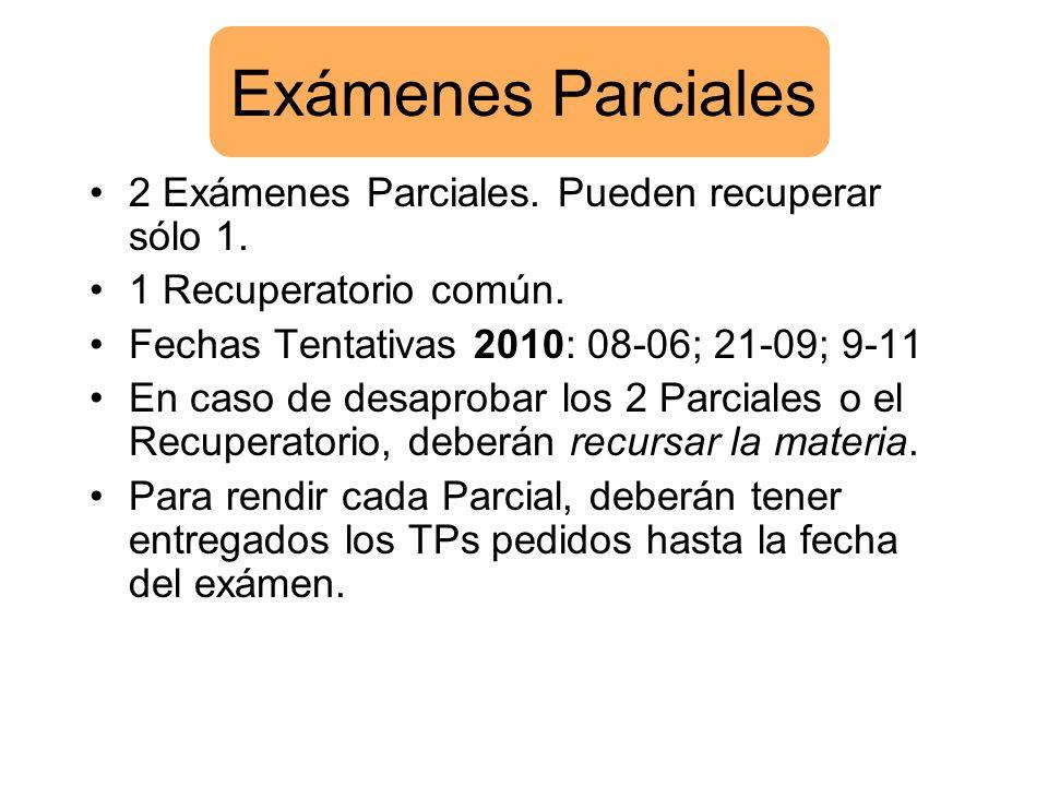 Exámenes Parciales 2 Exámenes Parciales. Pueden recuperar sólo 1. 1 Recuperatorio común. Fechas Tentativas 2010: 08-06; 21-09; 9-11 En caso de desapro