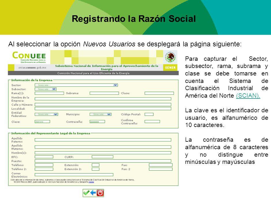 Registrando la Razón Social Al seleccionar la opción Nuevos Usuarios se desplegará la página siguiente: Para capturar el Sector, subsector, rama, subr
