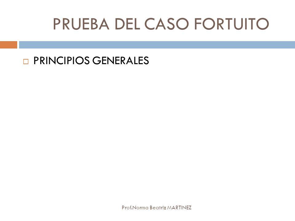 PRUEBA DEL CASO FORTUITO Prof.Norma Beatriz MARTINEZ PRINCIPIOS GENERALES