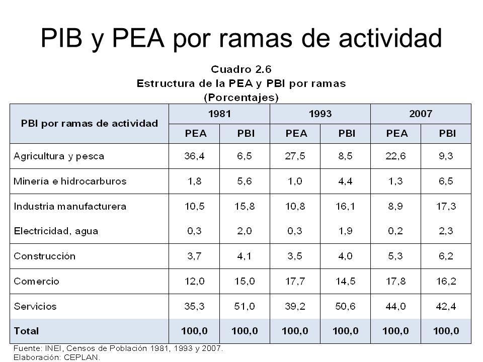 14 PIB y PEA por ramas de actividad