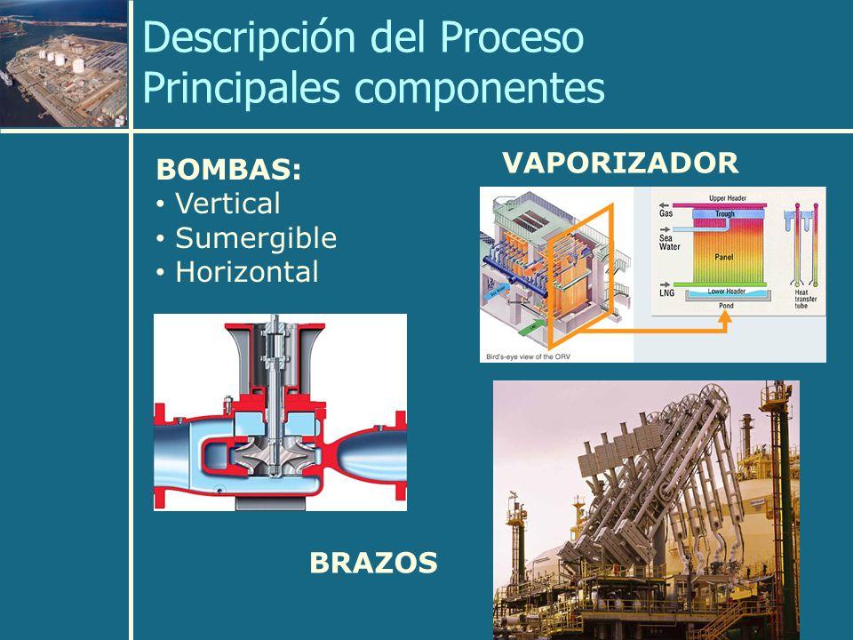 Descripción del Proceso Principales componentes BOMBAS: Vertical Sumergible Horizontal VAPORIZADOR BRAZOS