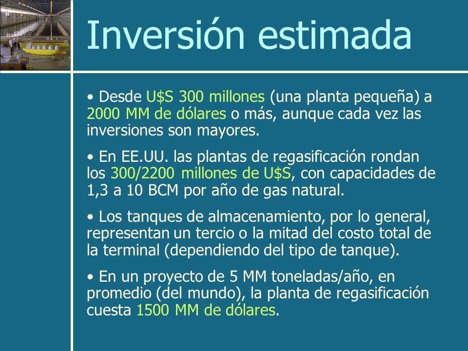 Inversión estimada Desde U$S 300 millones (una planta pequeña) a 2000 MM de dólares o más, aunque cada vez las inversiones son mayores.