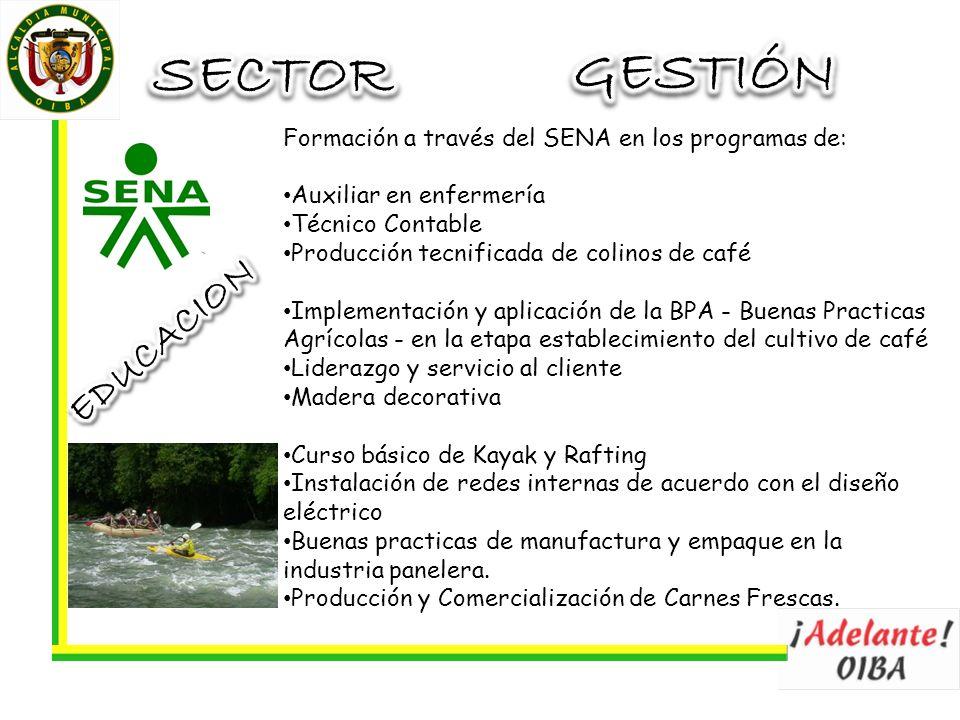 Formación a través del SENA en los programas de: Auxiliar en enfermería Técnico Contable Producción tecnificada de colinos de café Implementación y ap