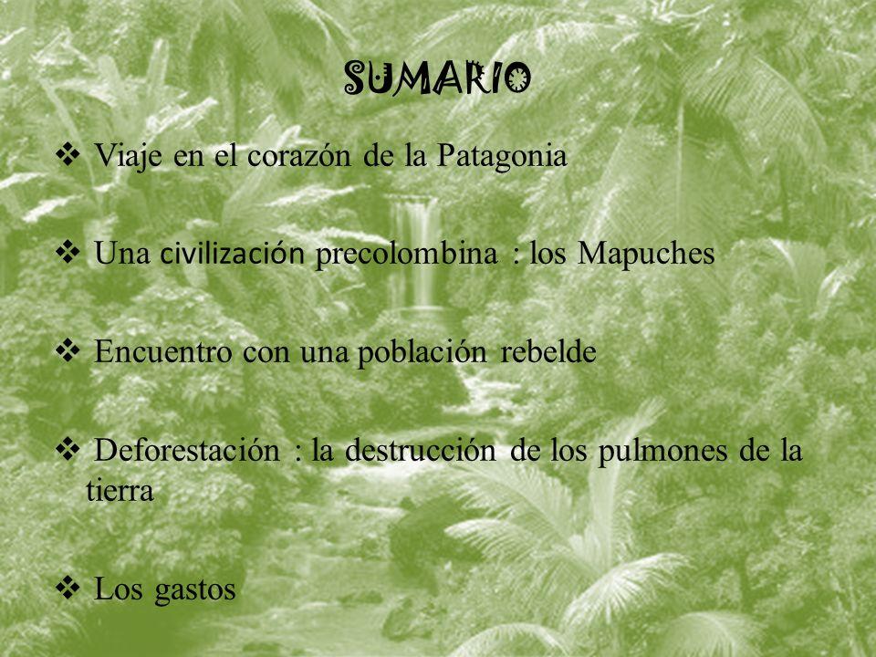 SUMARIO Viaje en el corazón de la Patagonia Una civilización precolombina : los Mapuches Encuentro con una población rebelde Deforestación : la destrucción de los pulmones de la tierra Los gastos