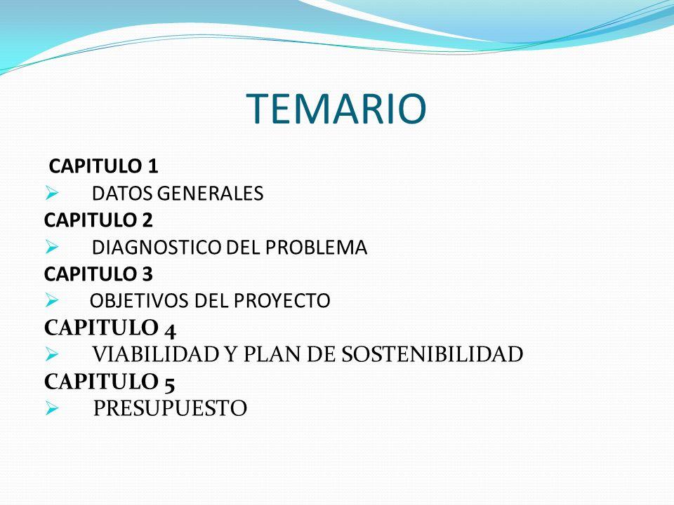 TEMARIO CAPITULO 1 DATOS GENERALES CAPITULO 2 DIAGNOSTICO DEL PROBLEMA CAPITULO 3 OBJETIVOS DEL PROYECTO CAPITULO 4 VIABILIDAD Y PLAN DE SOSTENIBILIDA
