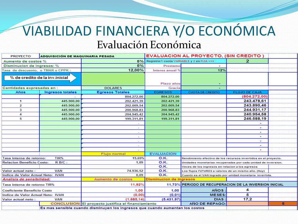 VIABILIDAD FINANCIERA Y/O ECONÓMICA Evaluación Económica