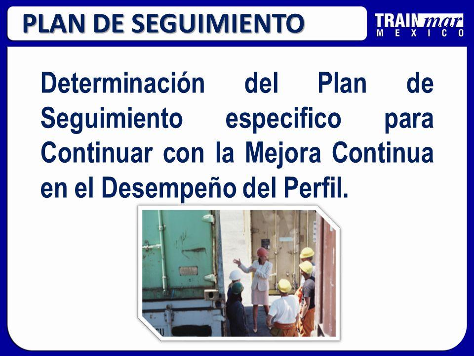 PLAN DE SEGUIMIENTO Determinación del Plan de Seguimiento especifico para Continuar con la Mejora Continua en el Desempeño del Perfil.