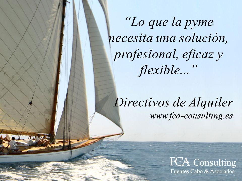 Lo que la pyme necesita una solución, profesional, eficaz y flexible...