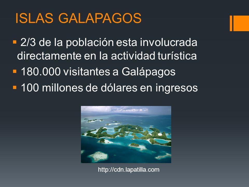 ISLAS GALAPAGOS 2/3 de la población esta involucrada directamente en la actividad turística 180.000 visitantes a Galápagos 100 millones de dólares en