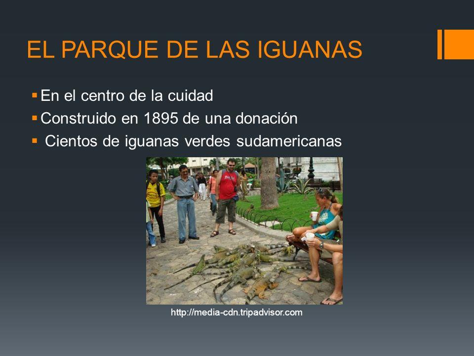 http://media-cdn.tripadvisor.com EL PARQUE DE LAS IGUANAS En el centro de la cuidad Construido en 1895 de una donación Cientos de iguanas verdes sudam