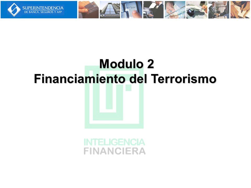 El Financiamiento del Terrorismo es el acto de proporcionar apoyo por cualquier medio a terroristas u organizaciones terroristas a fin de permitirles realizar actos de terrorismo.