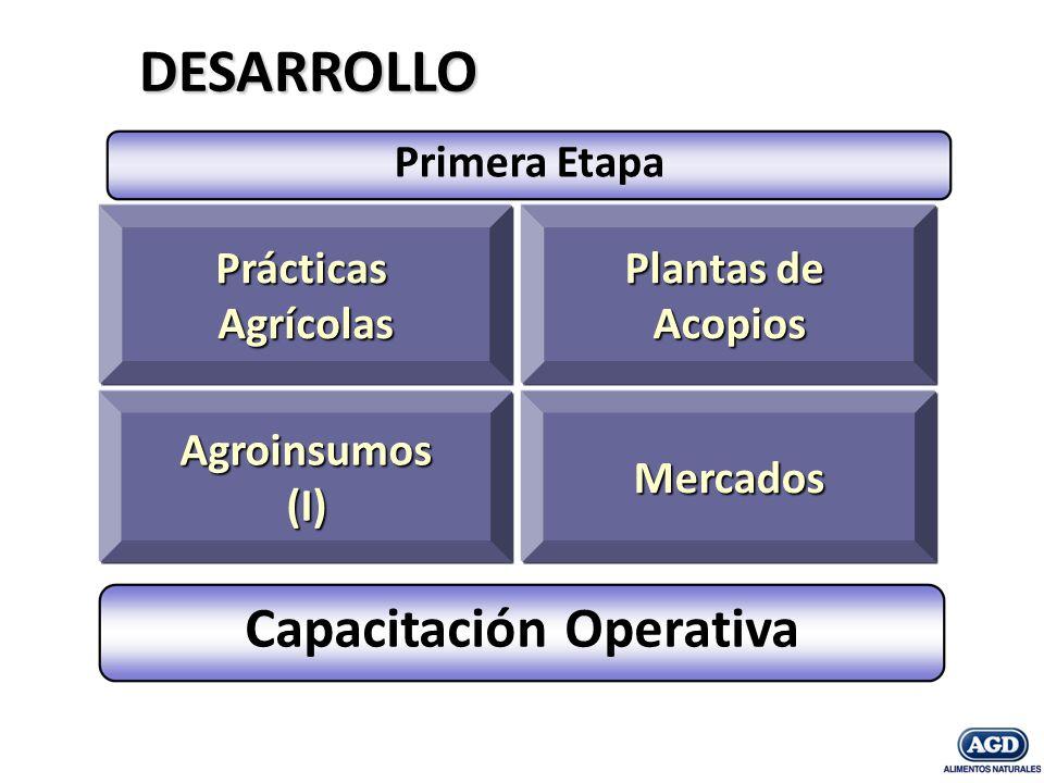 Prácticas Agrícolas Agroinsumos (I) Plantas de Plantas de Acopios Mercados DESARROLLO Capacitación Operativa Primera Etapa