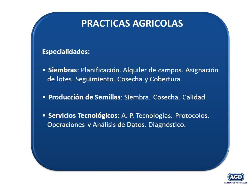 PRACTICAS AGRICOLAS Especialidades: Siembras: Planificación. Alquiler de campos. Asignación de lotes. Seguimiento. Cosecha y Cobertura. Producción de