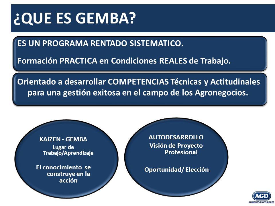Agroinsumos (II) Gestión Comercial (II): Planificación.