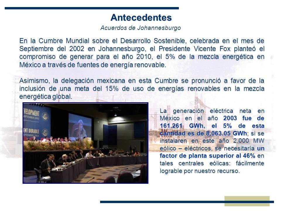 Antecedentes En la Cumbre Mundial sobre el Desarrollo Sostenible, celebrada en el mes de Septiembre del 2002 en Johannesburgo, el Presidente Vicente F