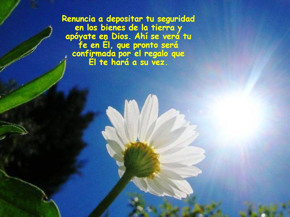 Adopta ese comportamiento nuevo del cristiano que rezuma en todo el Evangelio y que es lo opuesto a encerrarse en uno mismo y a preocuparse.