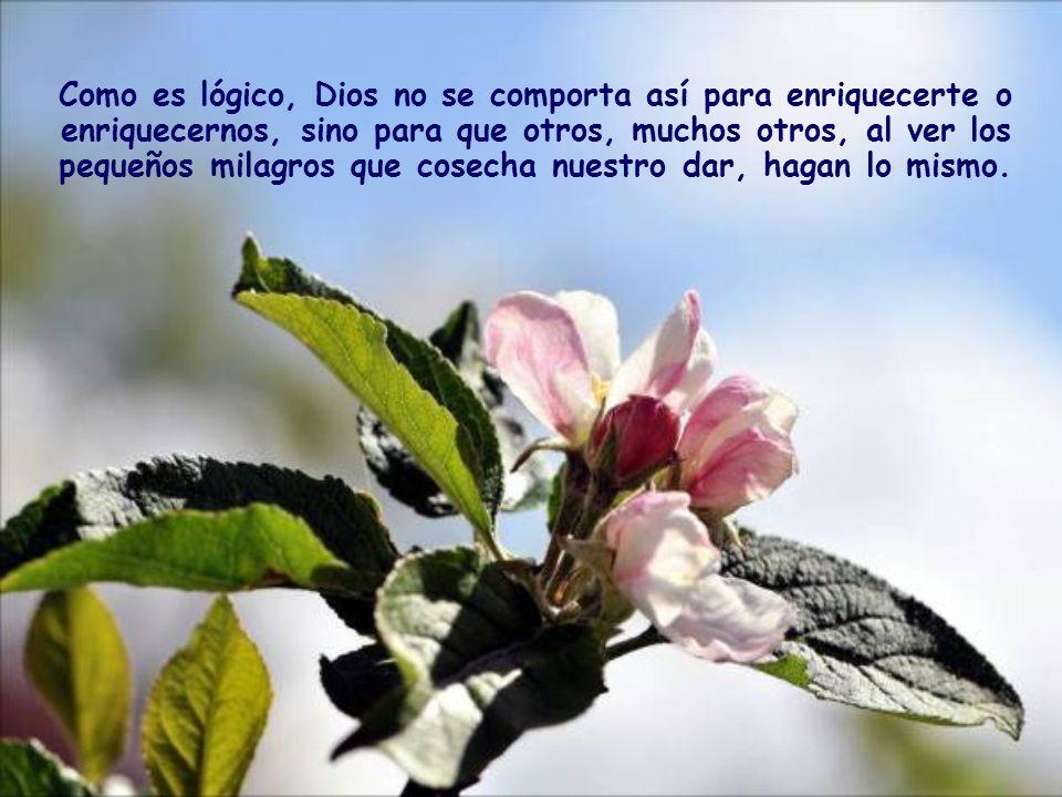 Renuncia a depositar tu seguridad en los bienes de la tierra y apóyate en Dios. Ahí se verá tu fe en Él, que pronto será confirmada por el regalo que