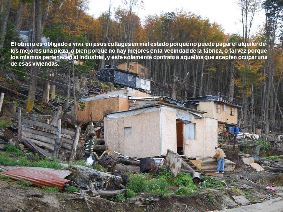 El obrero es obligado a vivir en esos cottages en mal estado porque no puede pagar el alquiler de los mejores una pieza, o bien porque no hay mejores