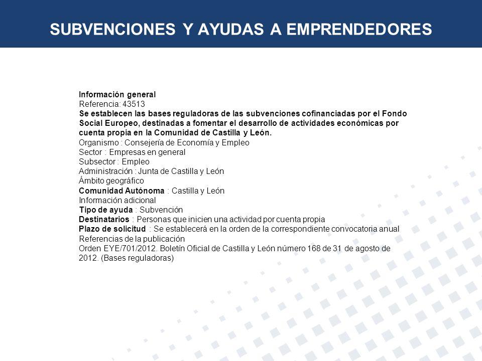 Información general Referencia: 43513 Se establecen las bases reguladoras de las subvenciones cofinanciadas por el Fondo Social Europeo, destinadas a