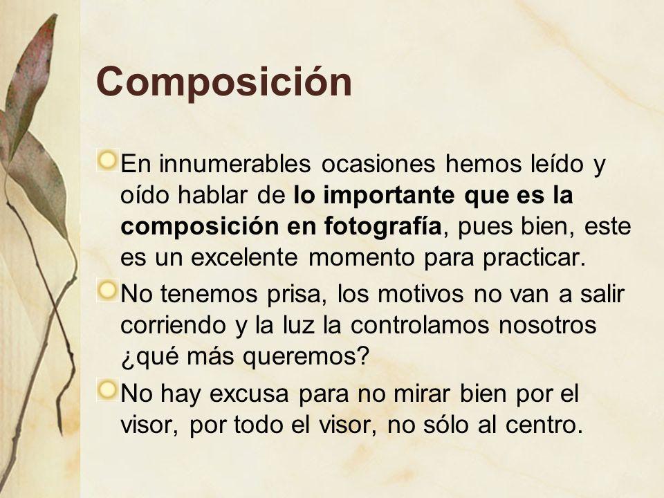 Composición En innumerables ocasiones hemos leído y oído hablar de lo importante que es la composición en fotografía, pues bien, este es un excelente momento para practicar.
