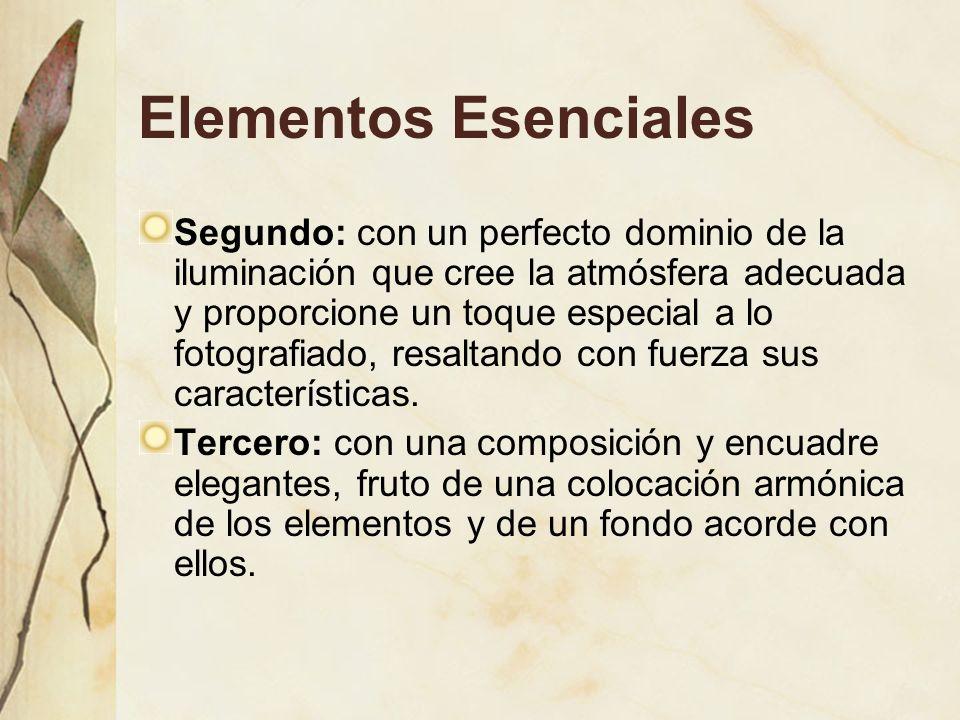 Elementos Esenciales Segundo: con un perfecto dominio de la iluminación que cree la atmósfera adecuada y proporcione un toque especial a lo fotografiado, resaltando con fuerza sus características.