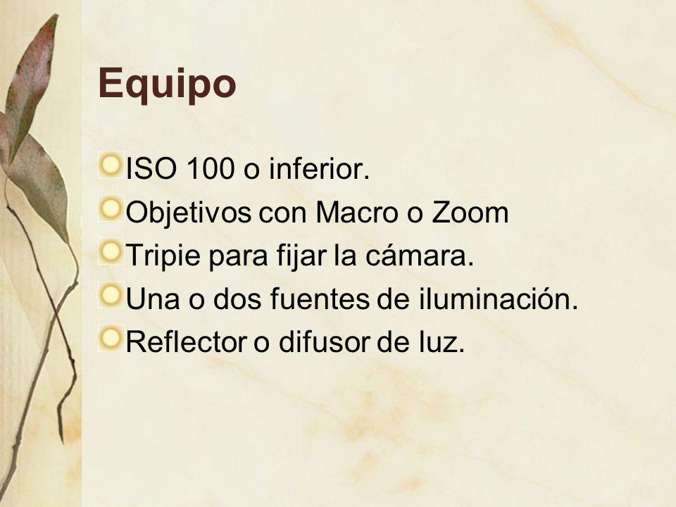 Equipo ISO 100 o inferior.Objetivos con Macro o Zoom Tripie para fijar la cámara.