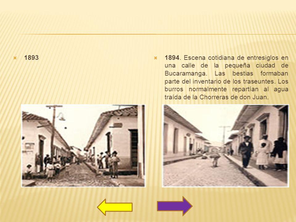 1894. Escena cotidiana de entresiglos en una calle de la pequeña ciudad de Bucaramanga. Las bestias formaban parte del inventario de los traseuntes. L
