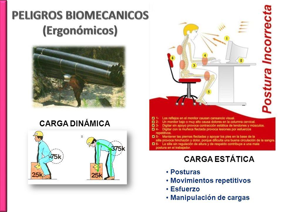 CARGA DINÁMICA CARGA ESTÁTICA Posturas Movimientos repetitivos Esfuerzo Manipulación de cargas